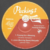 SALE ITEM - Carolene Thompson - Praying For A Blessing / Iyahman Pablo - Jomo (Burning Spear) Kenyatta (Peckings The Supreme) EU 12""